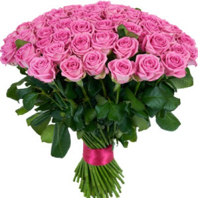 101-pink-roses-2-300x300