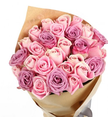 mixed-pink-and-purple-roses_1_large
